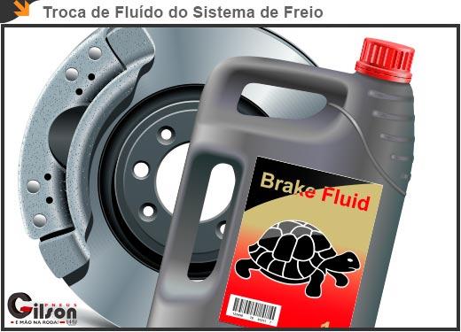 Troca de Fluído do Sistema de Freio