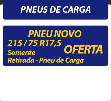 Catálogo Pneus de Carga